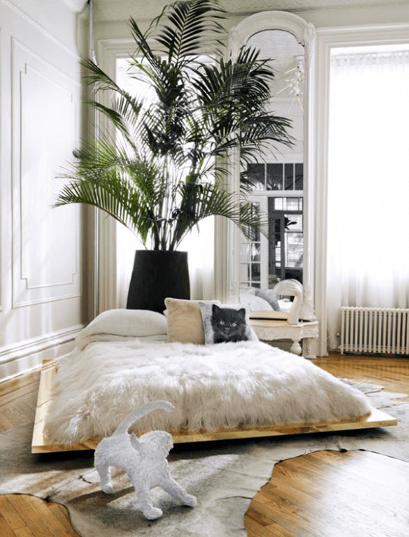 schlafzimmer in klassischem stil mit parkett, kuhfell teppich und diy bett_coole schlafzimmer deko mit palme in schwarzem blumenkübel und wandspiegel mit bogen