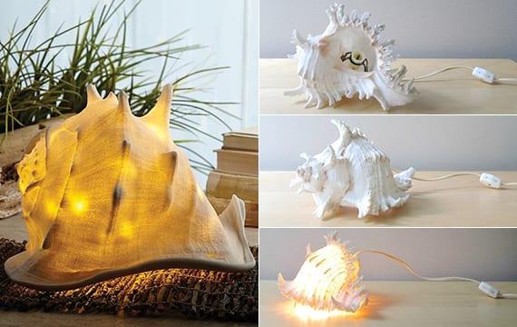 wunderschöne dekoidee mit DIY tischleuchte aus Meeresschnecke_einfache bastelidee zum lampe selber bauen