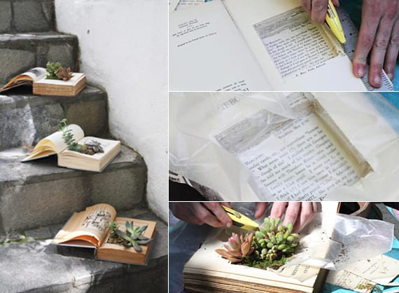 coole bastelidee für diy sukkulent-garten_buch bepflanzen mit fettpflanzen