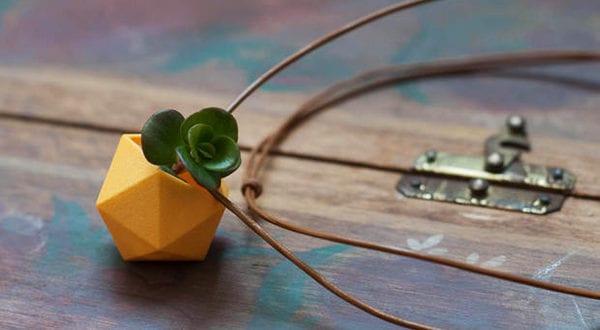 Bepflanzung ungewöhnlicher Pflanzengefäße