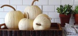 Dekorieren mit Kürbissen – 30 moderne Dekoideen für den Herbst