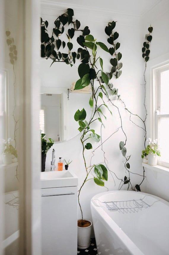 wandgestaltung im bad mit Philodendron als idee für entspannende badezimmergestaltung kleiner badezimmer