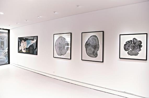 schwarzer pigmentdruck von baumstämmen in schwarzen bilderrahmen als inspiration für schwarzweiße wanddeko