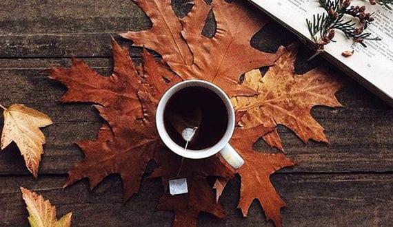 20 tolle Deko Ideen zum Basteln mit Blättern