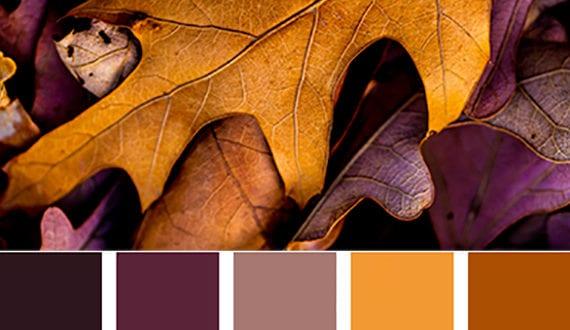 Farbkombinationen und wandfarbe ideen mit farbe lila freshouse - Farbkombinationen wandfarbe ...