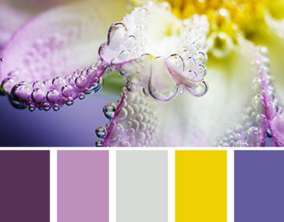 farbkombination von lilatönen und strahlendem gelb für eine fröhliche farbgestaltung