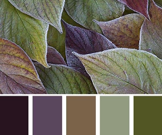 farbkombination von grün, lila und braun für eine gemütliche wohnraumgestaltung