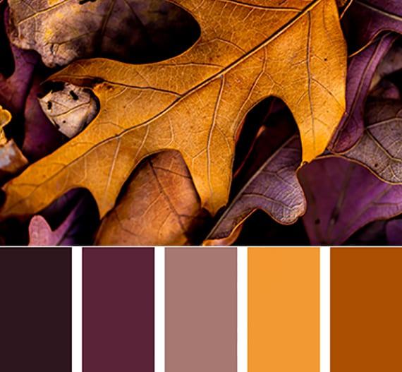 farbideen für wohnraumgestaltung in warmen lila und gelb tönen