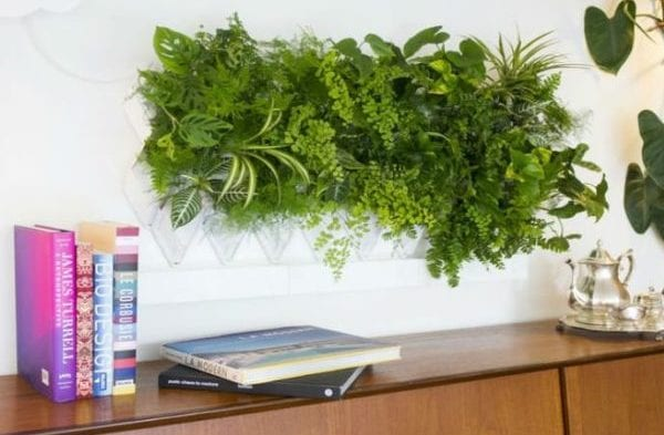 modulate wandpaneele für lebende wanddeko und grüne wandgestaltung mit pflanzen