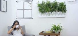 Go green mit Plug & Plant – 36 Pflanzenarten für Wandbegrünung in Heim und Büro