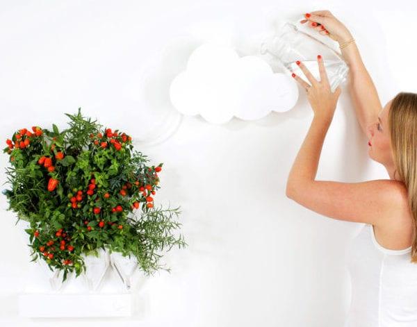 innovative wachstum-technologie für wandbegrünung und moderne wandgestaltung mit pflanzen