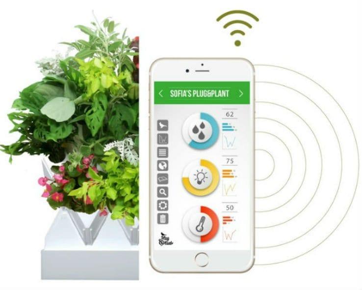 coole wandbegrünung mit klugem pflanzenwachstum-System_go greem mit begrünten wänden