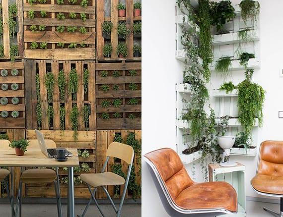 wände dekorieren und verkleiden mit kräuterpaletten als coole gestaltungsidee mit holz und pflanzen