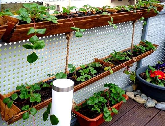 balkon bepflanzen mit erdbeeren in DIY Containers aus holz