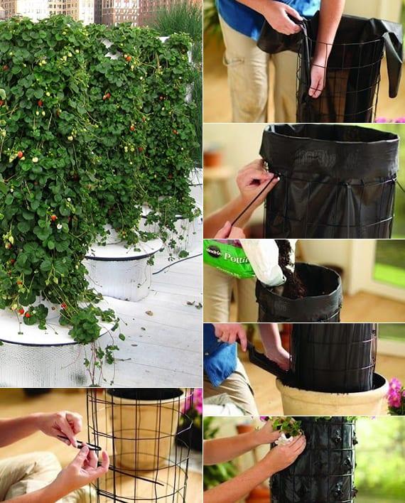 dachterasse bepflanzen mit erdbeertürmen