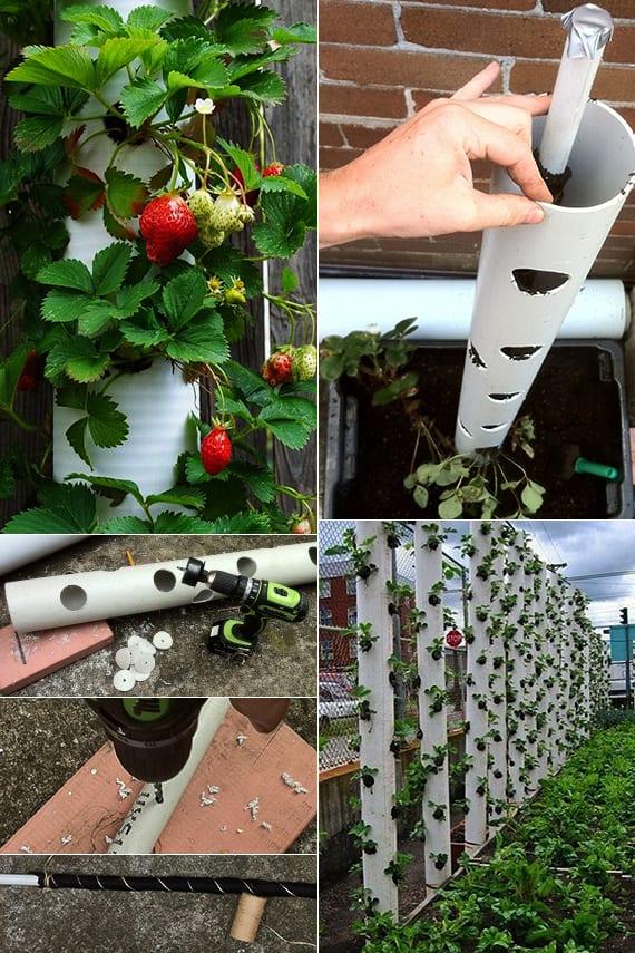 kreative bastelidee mit pvc-rohren für diy container zum pflanzen von erdbeeren