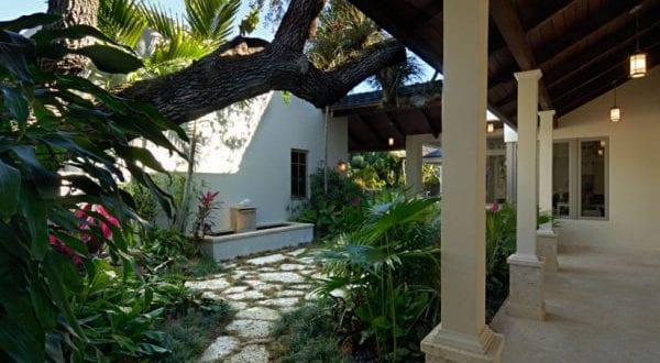 Exotische Pflanzen Im Eigenen Garten - Freshouse Exotische Pflanzen Terrasse Haus