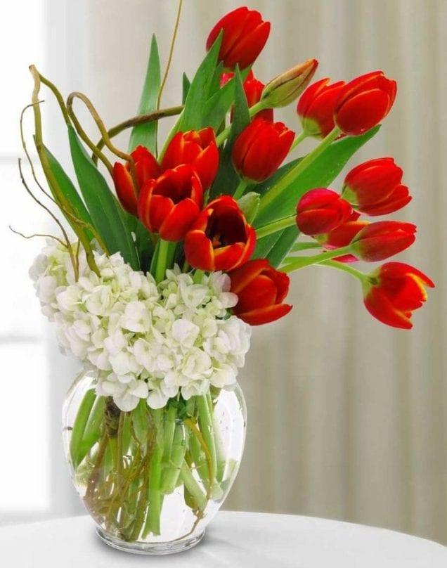 elegante tischdeko mit roten tulpen und weiser Hortensie im glasvase