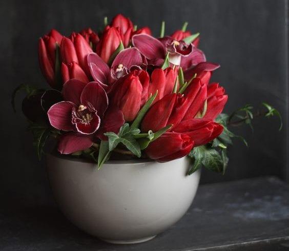 rote Tulpen und Orchideen mit grünem Efeu arrangieren als moderne Blumendeko in rot