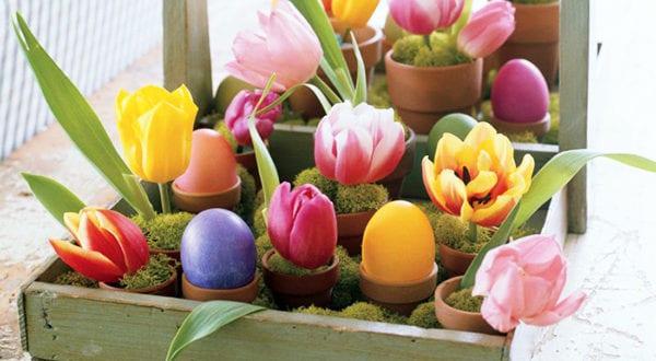 Zarte Frühlingsdeko mit Tulpen für frische Raumgestaltung