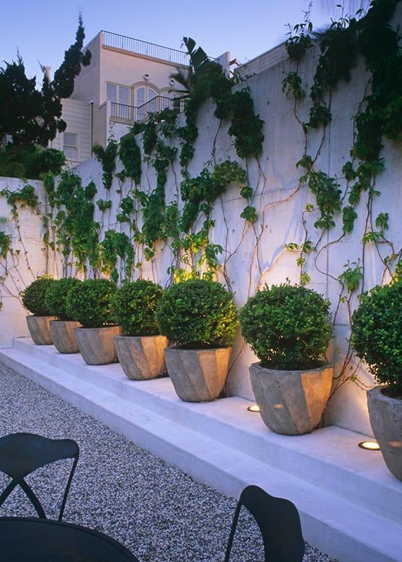 Zaun und Mauer im Garten als ein lebendiger Akzent - fresHouse