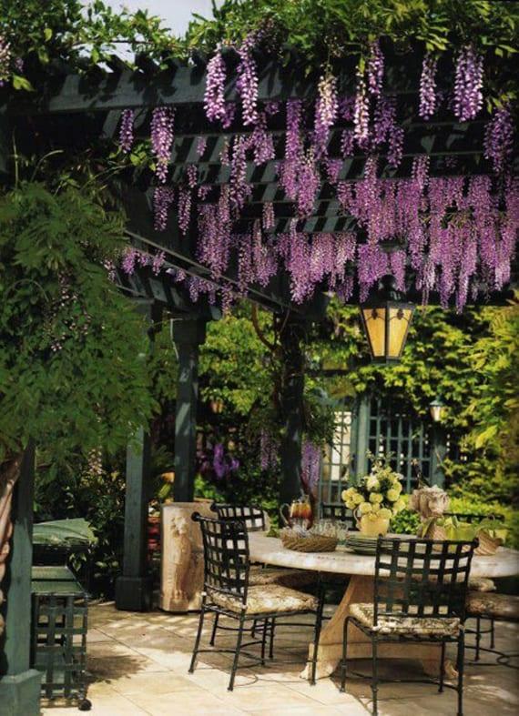 coole gartengestaltung mit grüner pergola aus holz und rosafarbiger wisterie