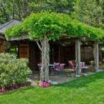 coole garten ideen für stilvolle und bunte gartengestaltung mit den schönsten kletterpflanzen für pergola
