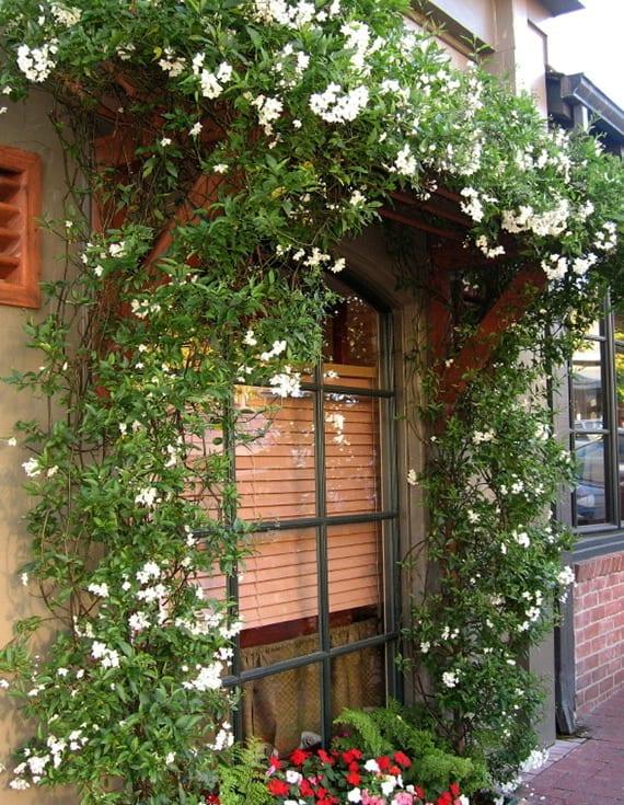 hausfassade dekorieren mit kleinem vordach aus holz und weißen Blüten über französischen fenstern