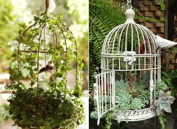 selbstgemachte dekoration für garten und balkon mit vogelkäfig, kletterpflanzen und fettpflanzen