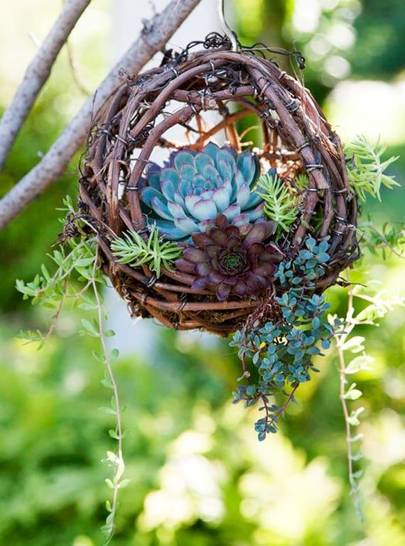 coole blumendeko selber basteln als kleiner Fettpflanze-Hängegarten