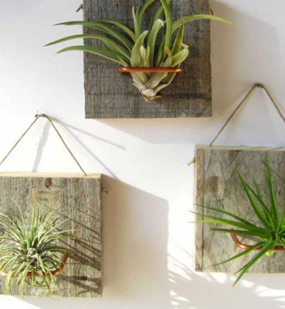 bastelidee für selbstgemachten Hängegarten als moderne wanddekoration