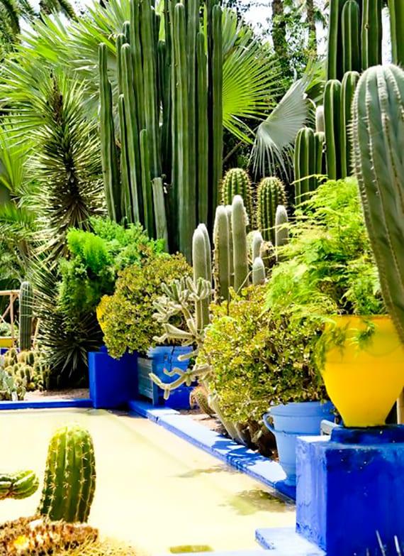 garten bund gestalten mit palmen und kakteen, gelben Amphoren als pflanzbehälter und pool mit blaugestrichenem rand