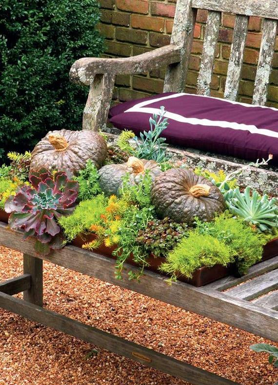 herbstdekoration für außen mit terrarium aus Sukkulenten, Sedum, Dickblatt,Echeveria und kürbissen