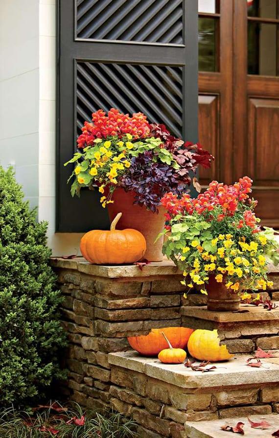 naturstein außentreppe herbstlich dekorieren mit dunkelroten Baumblättern, orangen kürbissen, orangen Löwenmäulern, Loropetalum und gelben Veilchen in blumentöpfen