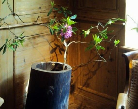 kreative dekoideen mit baumstammvase und großem zweig vom Blütenstrauch